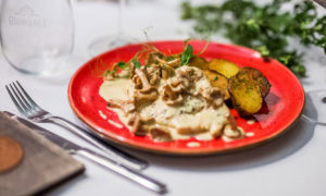 Chiken breast in Chanterelle mushroom sauce