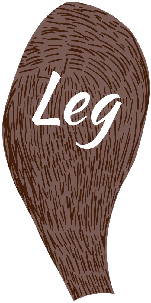 roe deer leg
