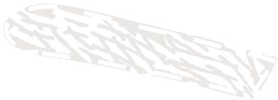 Polędwica z dzika