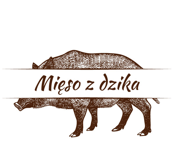 Mięso z dzika