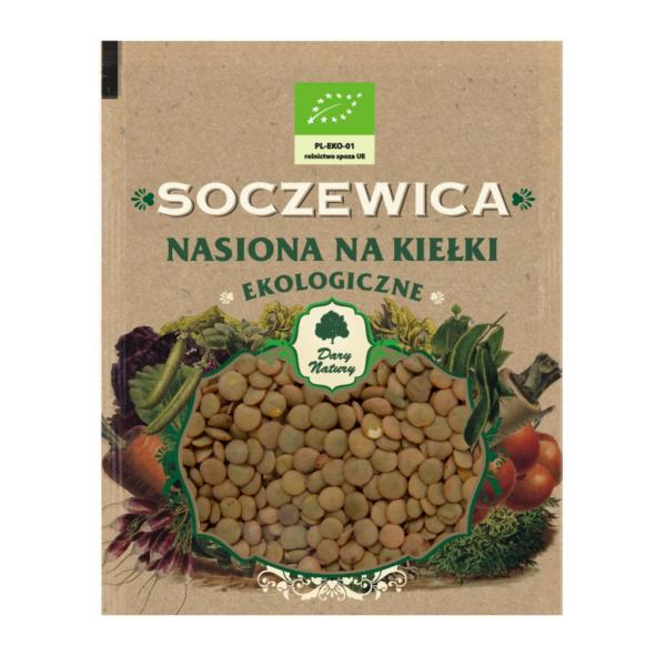 Soczewica - nasiona na kiełki